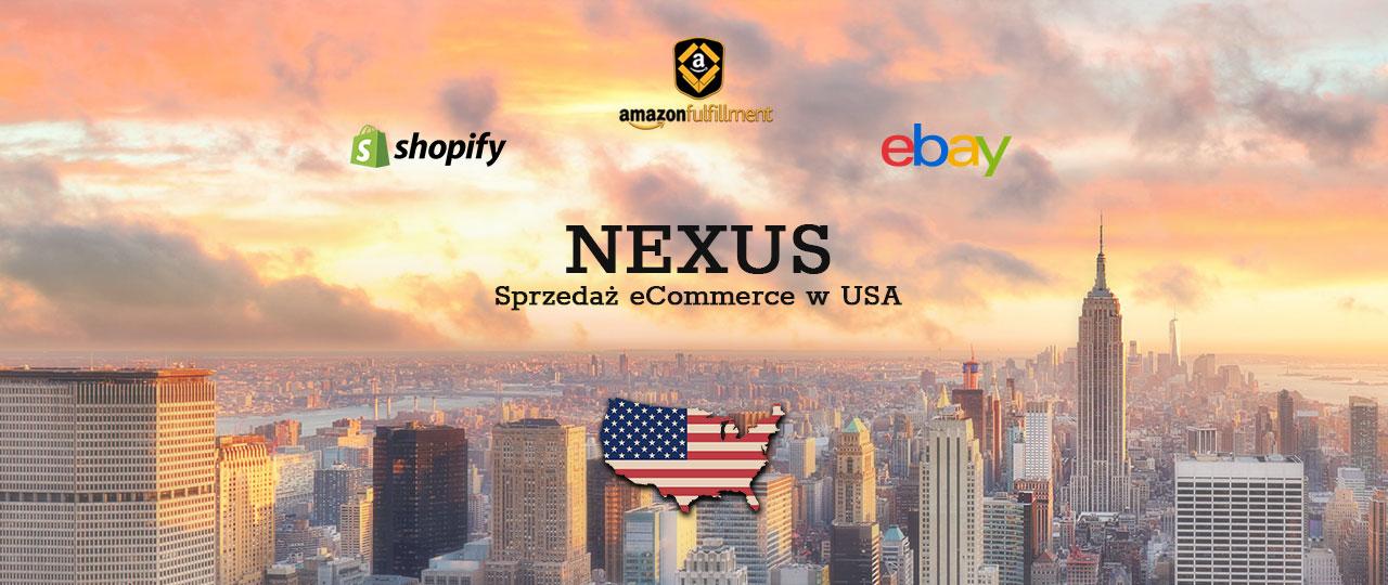 Sprzedaż eCommerce w USA - czym jest Nexus oraz Nexus ekonomiczny